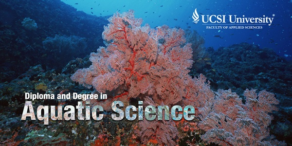 Dive into Aquatic Science Study at UCSI Malaysia