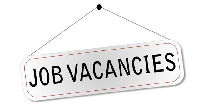 Junior Graphic Design Job Vacancy