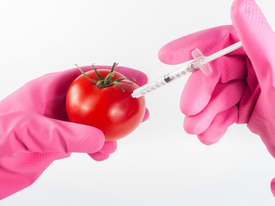 Food Technology and Nutrition